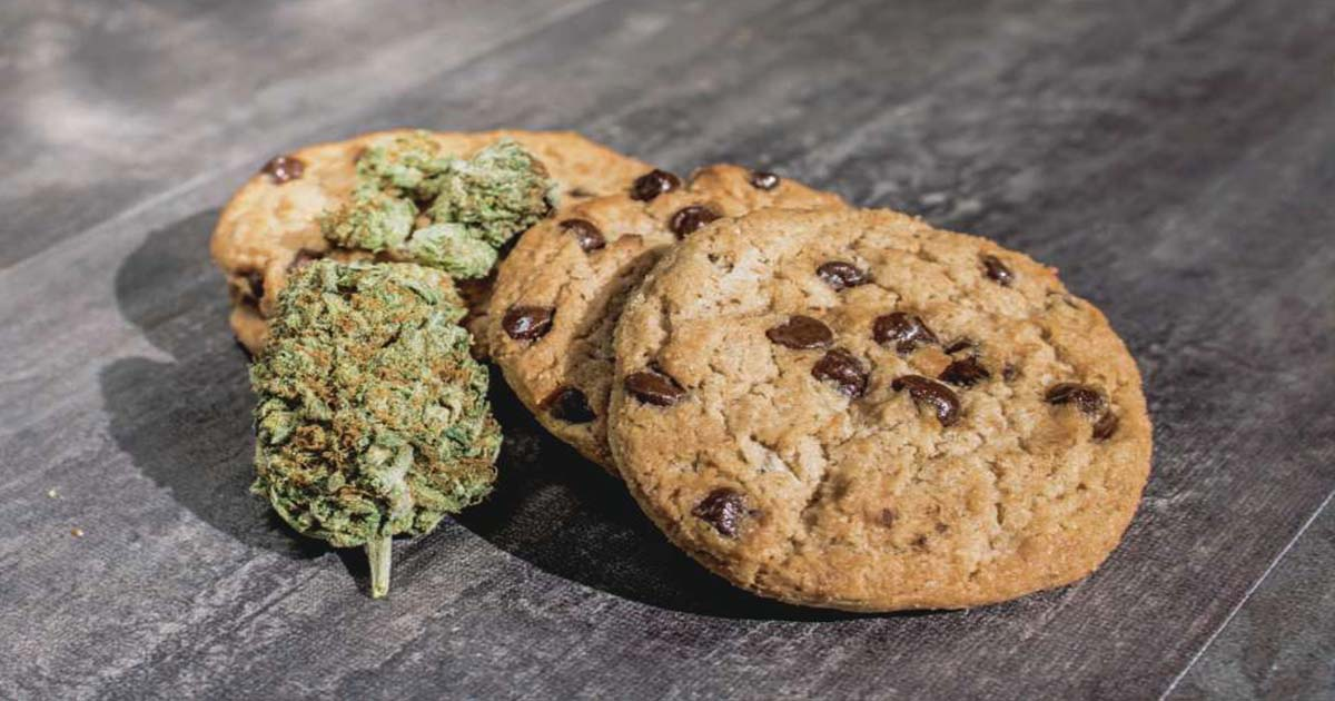 cannabis-cookies